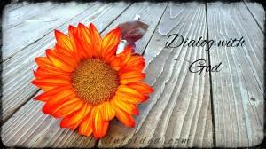 sunflower-187985_1280