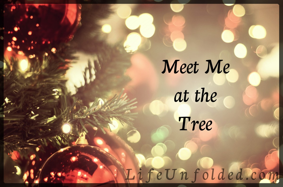 Meet Me at the Tree