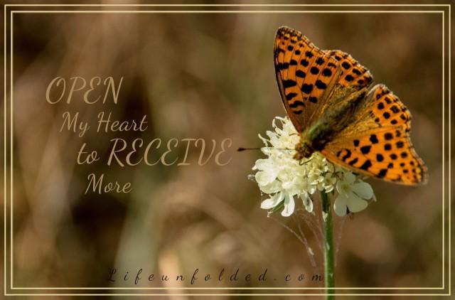 butterfly-828145_1280