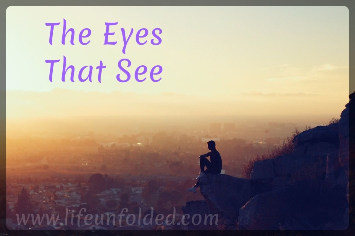 The Eyes That See